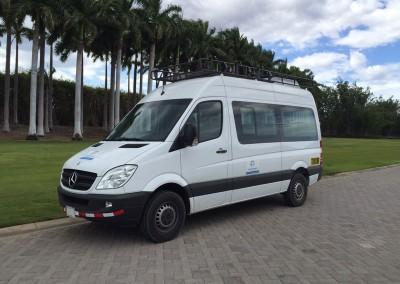 White Mercedes Sprinter van with palm trees behind